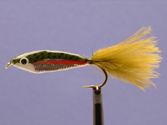 Rainbow Trout Minnow